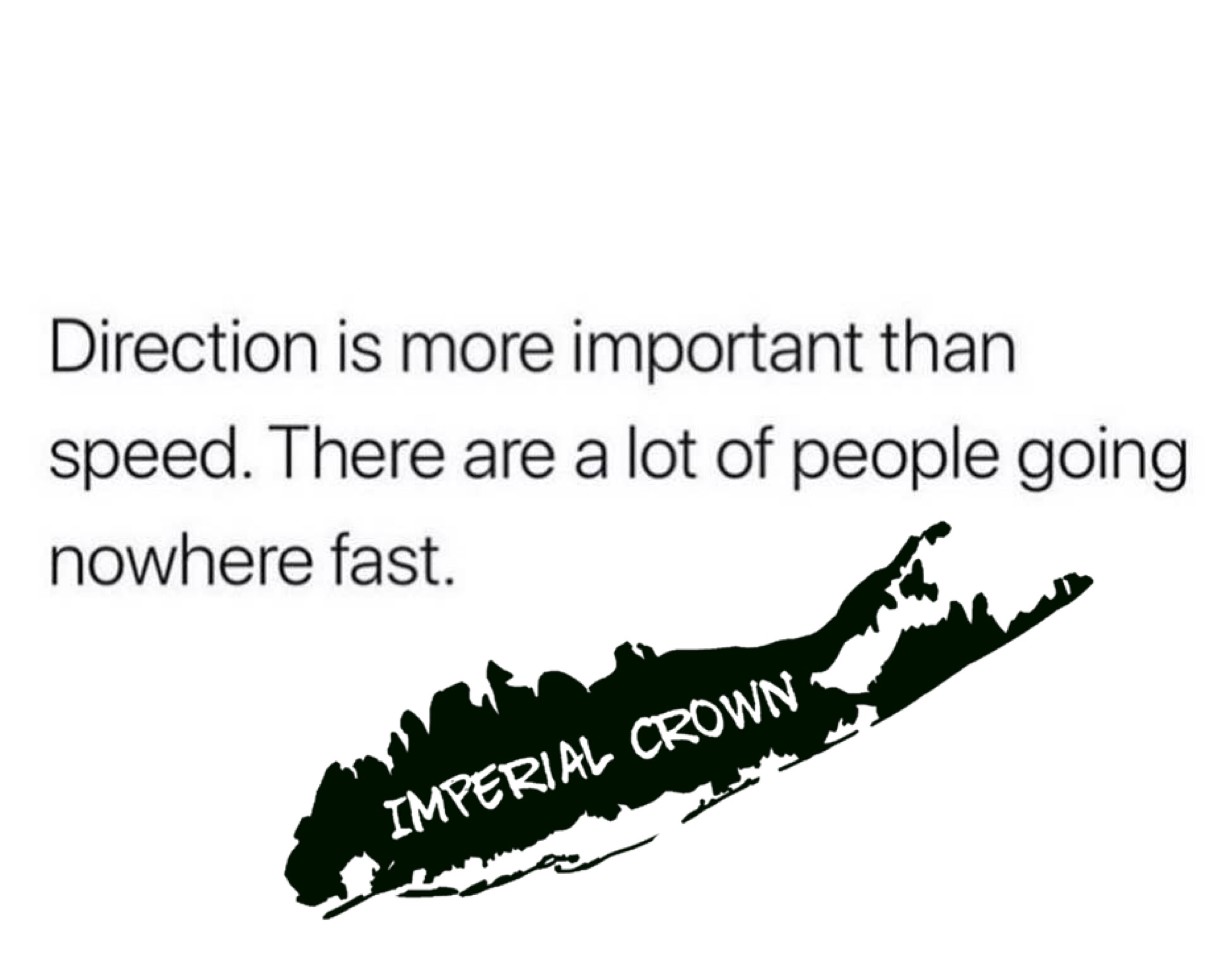 Direction is more important than speed…..