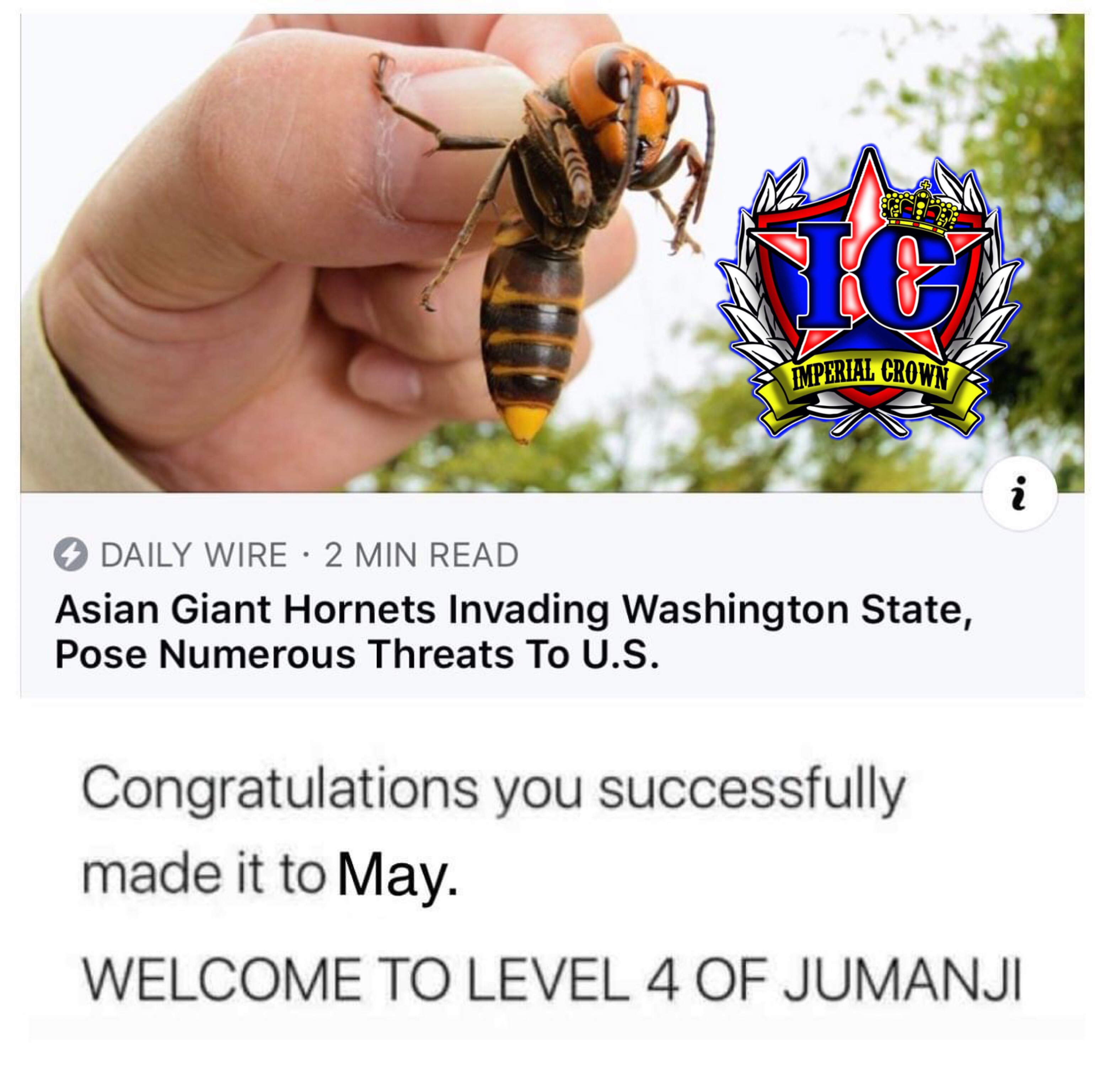 Congratulations you successfully made it to may